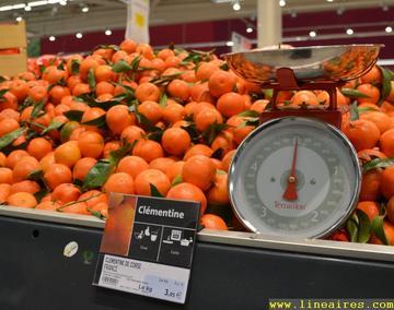 Clementine-balance-2015-AB-2_large.jpg